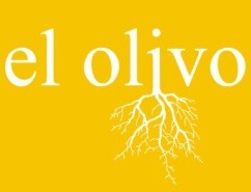 Morena Films presents the official poster of The Olive Tree